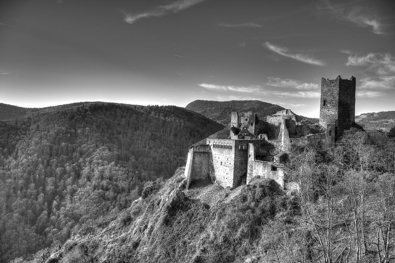 Chateau de Ribeauvillé D4S_4157