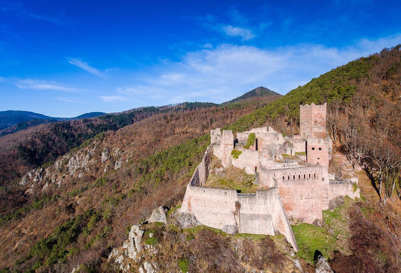 Chateau de Ribeauvillé DJI_0134