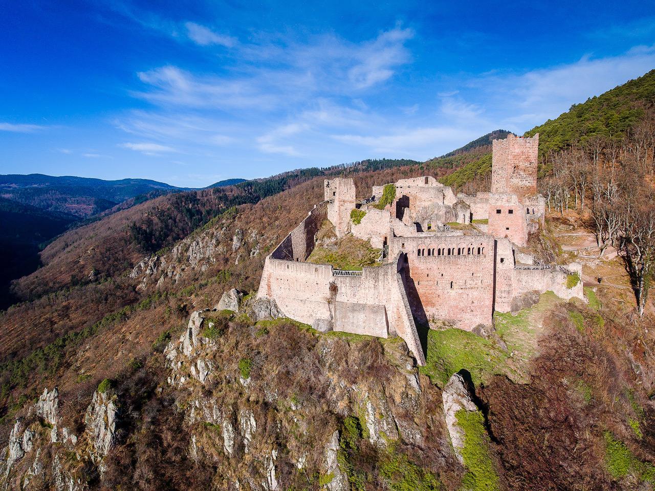 Chateau de Ribeauvillé DJI_0149
